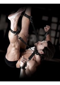 Sir Richard`s Command Hogtie and Collar Set Black And Stainless Steel